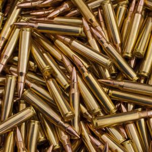5.56x 51mm Range Ammo